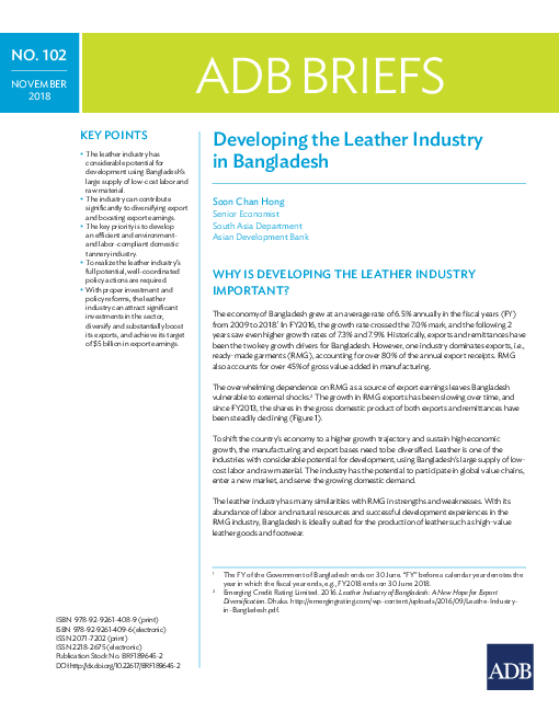Developing the Leather Industry in Bangladesh