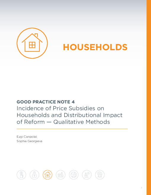 Good Practice Note 4: Incidence of Price Subsidies on Households and Distributional Impact of Reform - Qualitative Methods