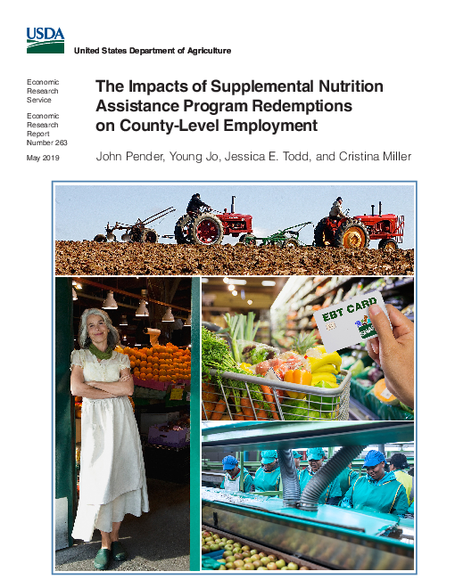 The Impacts of Supplemental Nutrition Assistance Program Redemptions on County-Level Employment
