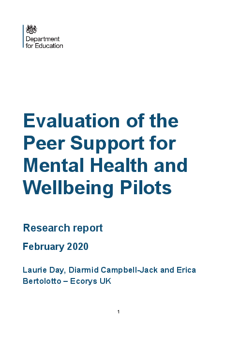 """Evaluation of the Peer Support for Mental <span class=""""accent"""">Health</span> and Wellbeing Pilots"""